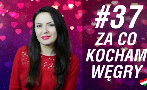Ogoszenia Wojciechowice - Darmowe ogoszenia drobne w